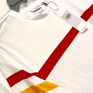 Calvin Klein Men's Regular Fit Color Block T-shirt
